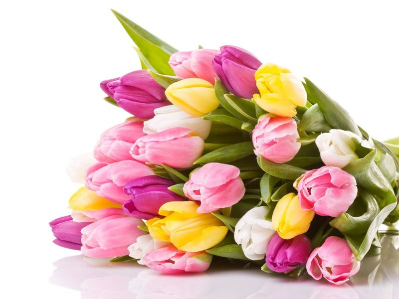 Çiçekleriniz Bize Emanet!